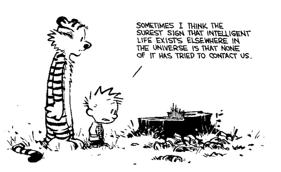 Calvin 3 - copie.jpg